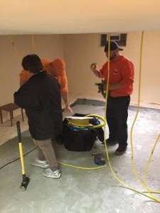 Water Damage Restoration Technicians Working